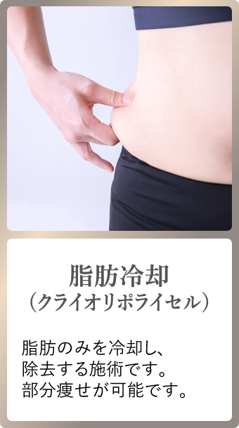 脂肪冷却(クライオリポライセル)